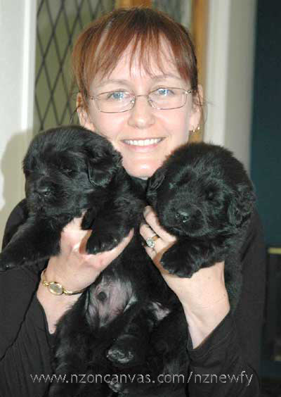 Michelle with two Newfoundland pups